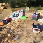 Kastration Mallorca 2016.12_004